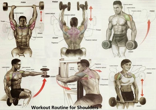 gym workout Routine