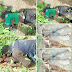 So Sad!!! See Photos Of Innocent Fulani Herdsmen Killed In Southern Kaduna