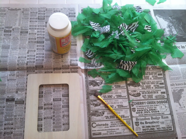 Beauty and the Bud DIY Mod Podge Picture frames