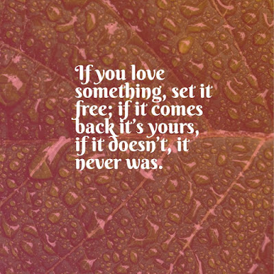 cute love quotes If you love something, set it free; if it comes back it's yours, if it doesn't, it never was. life quotes