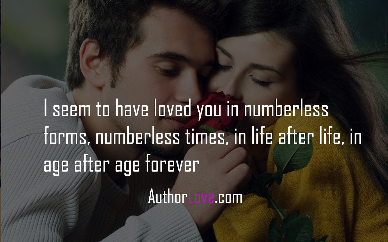 Love Romantic Quotes I Seem To Have Loved You In Numberless Forms  Love Quotes