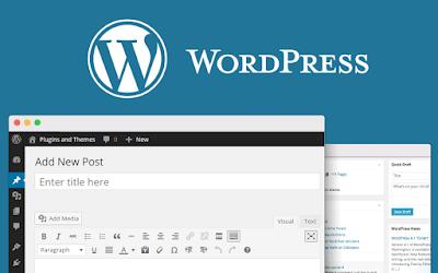 Materi 9 : Cara Menginstal Wordpress di Hosting dan Domain