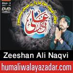 http://www.humaliwalayazadar.com/2017/09/syed-zeeshan-ali-naqvi-nohay-2018.html