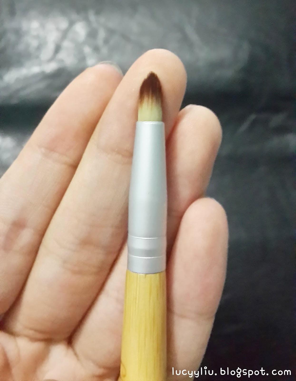 Ecotools Smudge Duo, Masami Shouko 311 and Sigma E25 eye brush