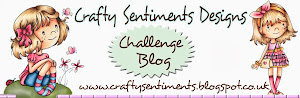 Crafty sentiments - random winner