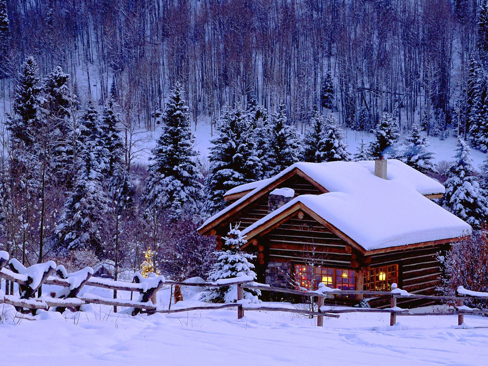 Good   Wallpaper Home Screen Winter - free%2BWinter%2BWallpapers%2B1  Collection_957618.jpg
