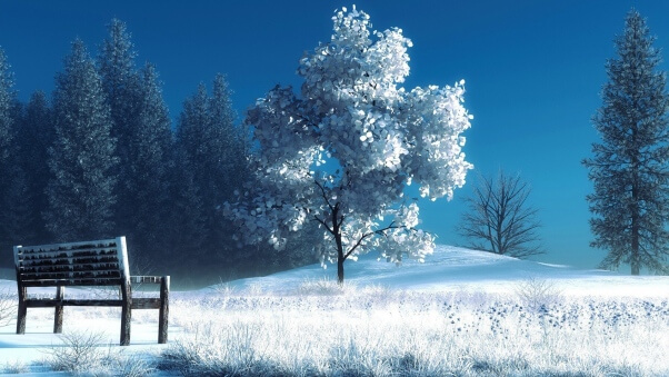 Desktop HD Wallpaper Nature Snow Bench Trees