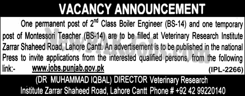 Boiler Engineer, Montessori Fresh Jobs in Veterinary Research Institute, Apply Online