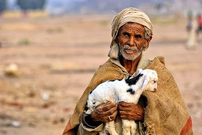 hombre beduino desierto cabra