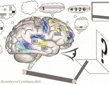 Científicos crean un cerebro artificial