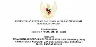 Penerimaan CPNS Terbaru Kementerian Koperasi dan Usaha Kecil dan Menengah