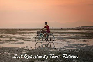 Lost Opportunities Never Returns Essay