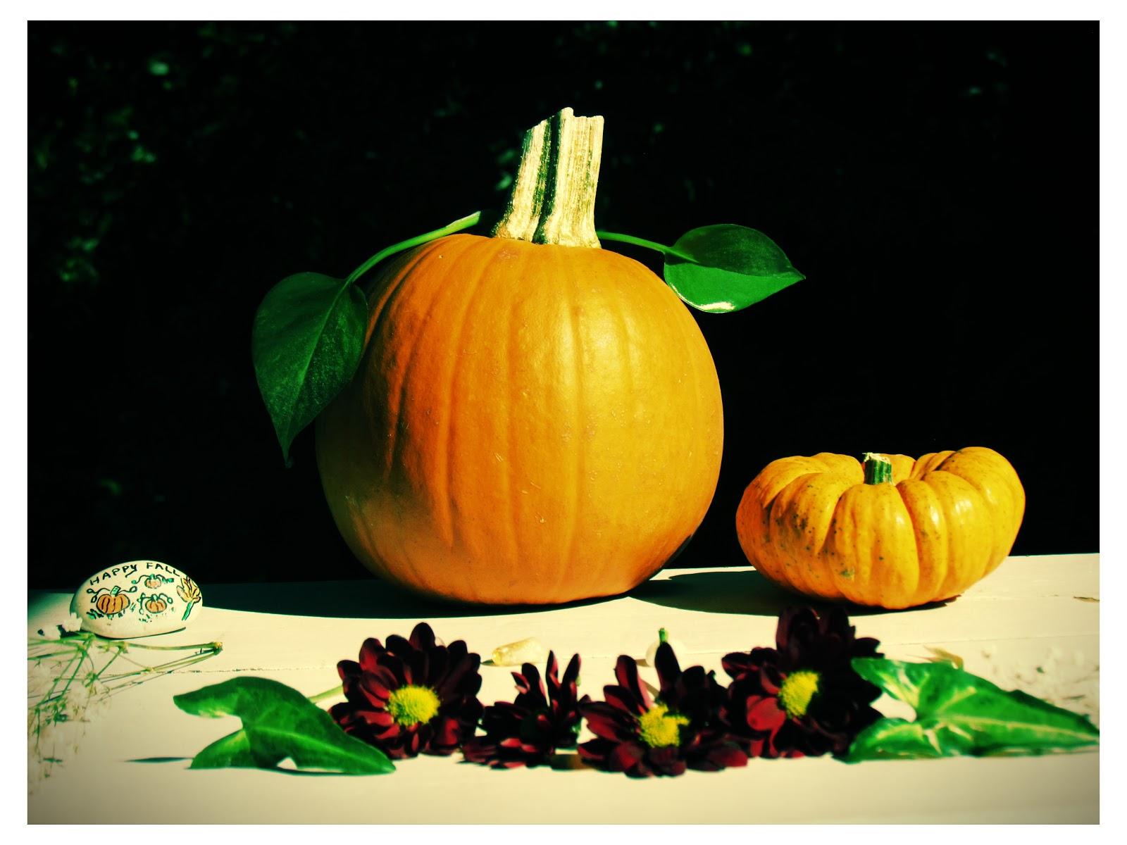 Green Living Plants and Pumpkins For Halloween Elegance
