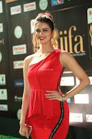 Meenakshi Dixit in Red One Shoulder Red Zipped up gown at IIFA Utsavam Award 50.JPG