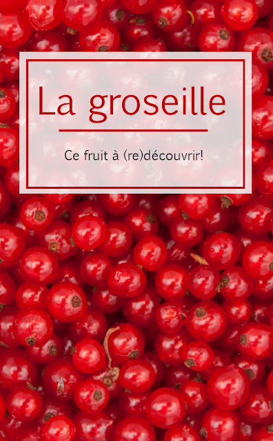 groseille gabelle cassis fruit découverte marguerite verte blog pinterest