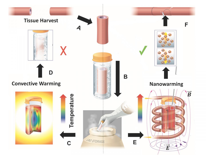 νανοσωματίδια