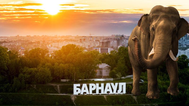 2 августа 2018 года стартует первая в Алтайском крае конференция разработчиков и пользователей СУБД PostgreSQL