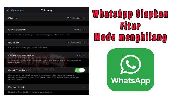 WhatsApp Siapkan Fitur Mode menghilang
