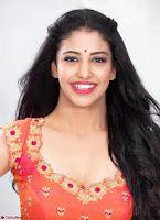 Daksha Nagarkar ~  Exclusive Portfolio 008.jpg