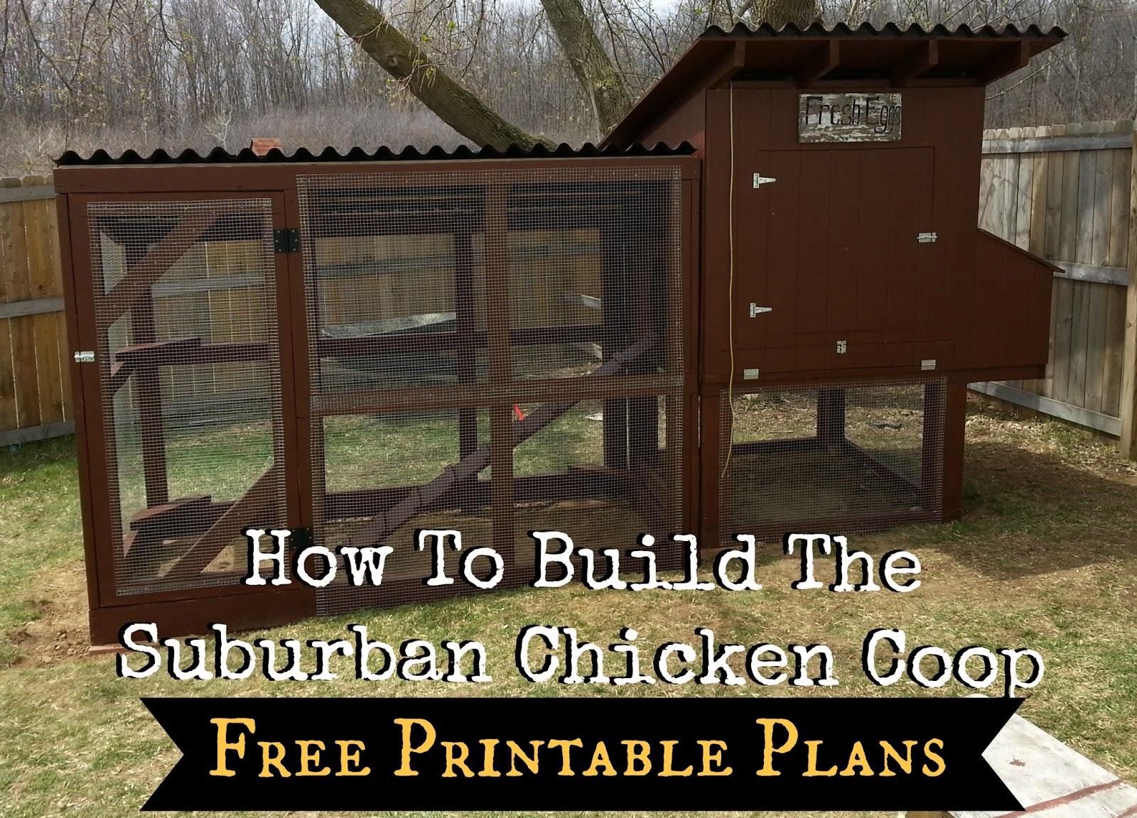 how to build the simple suburban chicken coop free