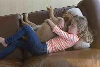 النوم مع الحيوانات الأليفة