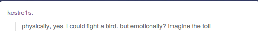 entertaining comment about a man fighting a bird and the emotional turmoil