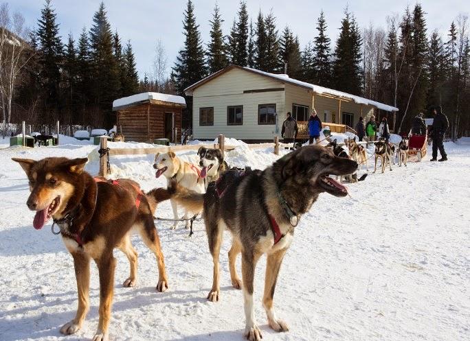 Northern Lights Alaska Adventure Tour