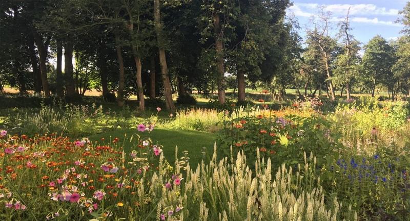 Jardín vivaces en flor Museo Voorlinden diseñado por Piet Oudolf