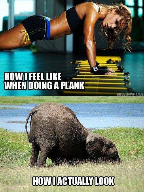 What What I And Look Plank I I Actually When Planking Look