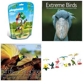 Exotic Bird Gift Ideas