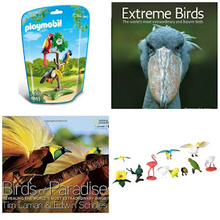 Exotic Bird Gift Ideas