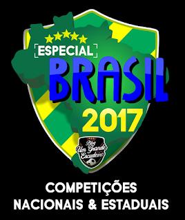 http://umgrandeescudeiro.blogspot.com.br/2013/04/brasil-campeonatos-estaduais-2013.html