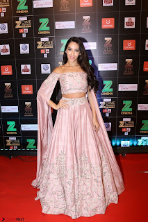 Bollywood Celebrities on the Red Carpet Of Zee Cine Awards 2017 Exclusive 055.JPG