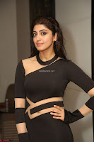 Pranitha Subhash in a skin tight backless brown gown at 64th Jio Filmfare Awards South ~  Exclusive 171.JPG