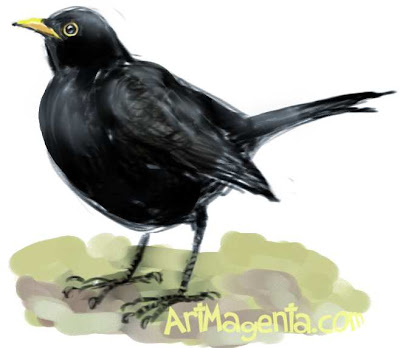 Eurasian Blackbird is a bird painting by ArtMagenta