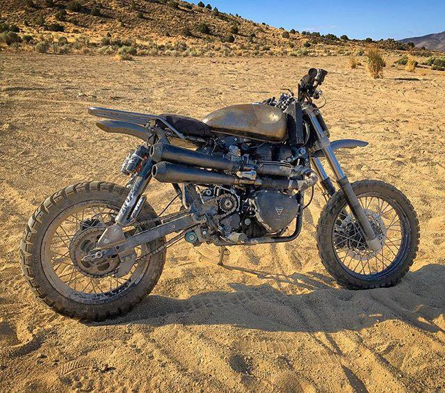 Triumph Desert Sled by Modulus Creative