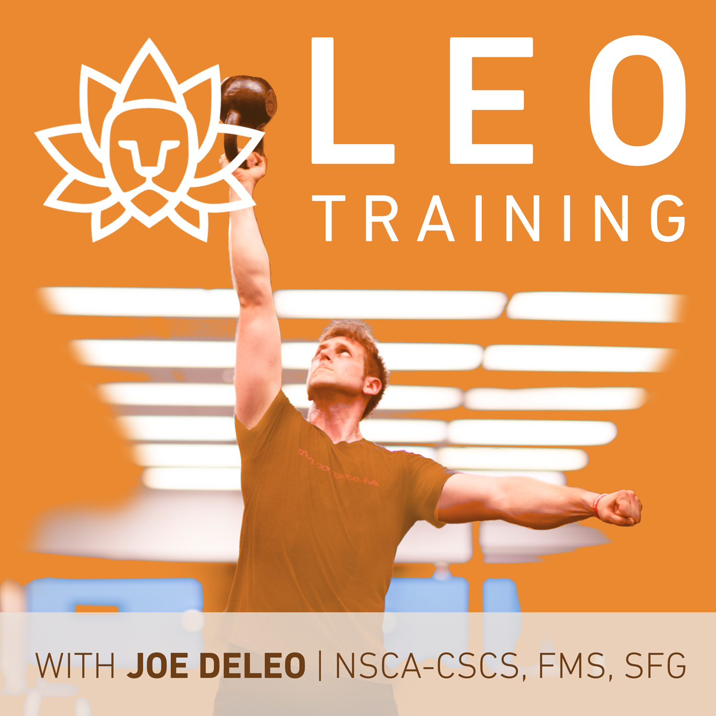 The definitive guide to pt podcasts modern manual therapy blog the leo training podcast is hosted by former rower and strength coach joe deleo with his background in both endurance and strength training especially fandeluxe Image collections