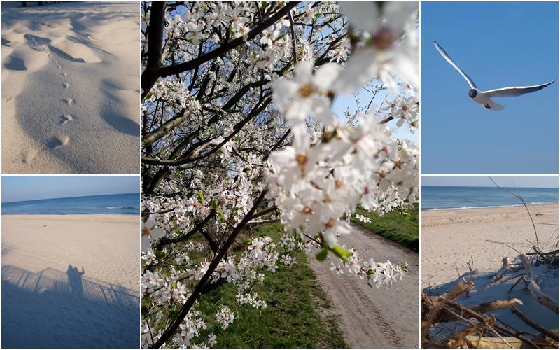 jak jest nad Baltykiem w kwietniu