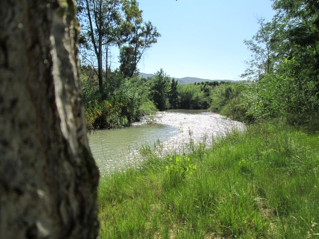 El río Turia a su paso por Pedralba - Paseos Fotográficos