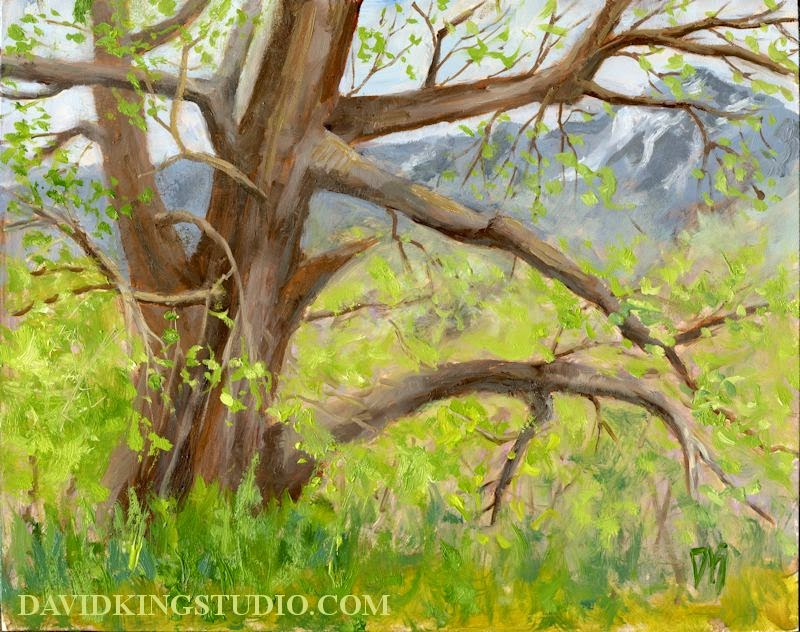 art painting oil tree spring nature park