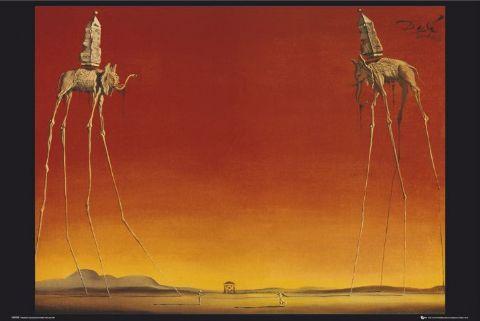 Lake and Hartville Elementary Art: Dali's Elephants and ...