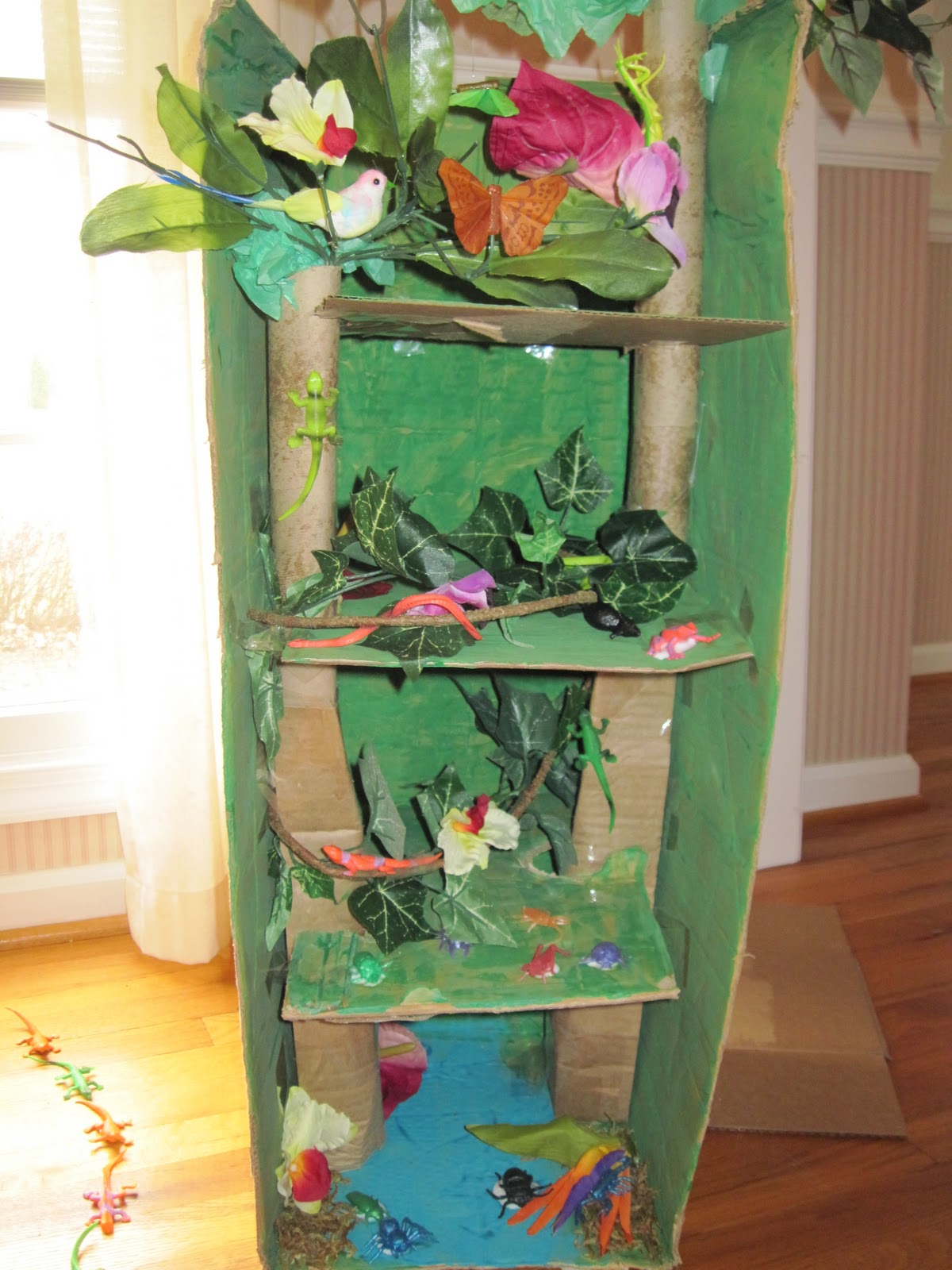 Kids Diorama With Details: Absolute Hodgepodge: Rainforest Diorama: A Place I Would