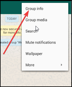 group-info-of-whatsapp-group