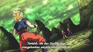 Dragon Ball Super Episode 114 Subtitle Indonesia
