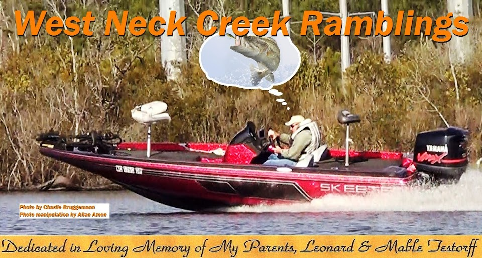 West Neck Creek Ramblings