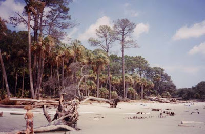 To Get To Hunting Island Is Very Simple, From Either Direction On  Interstate 95 To Exit 33 And Follow US Highway 21 To Its End At The  Entrance Of The Park.