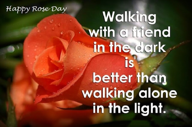 Happy Rose Day images for Friends, rose day pictures images