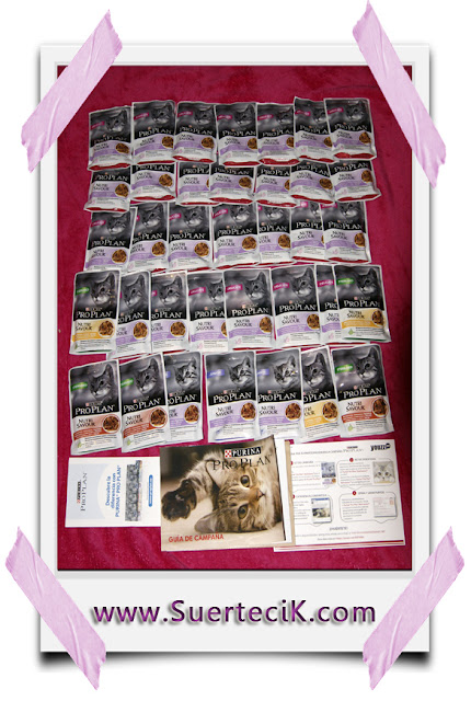 Purina Pro Plan Canned Dog Food