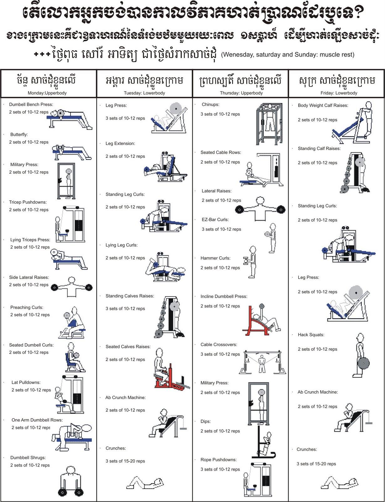 Gkormusclesportspot Beginner Training