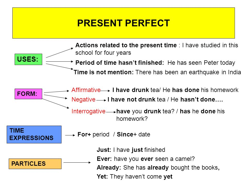 Present perfect simple + continuous | Exercise 1